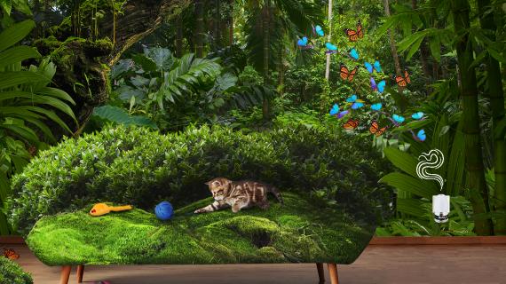 Heeft je kat last van een stresserende omgeving? Ontdek het hier!